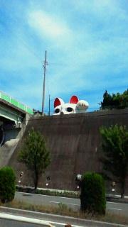 ニャンコ大好き〜☆